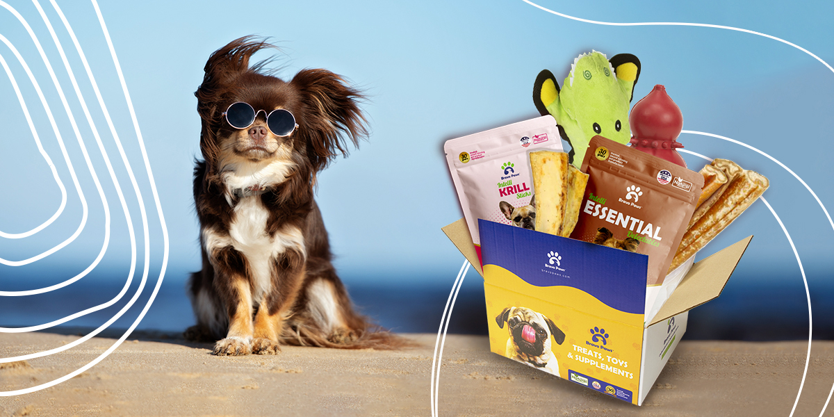 Pet subscription box to boost the immune system