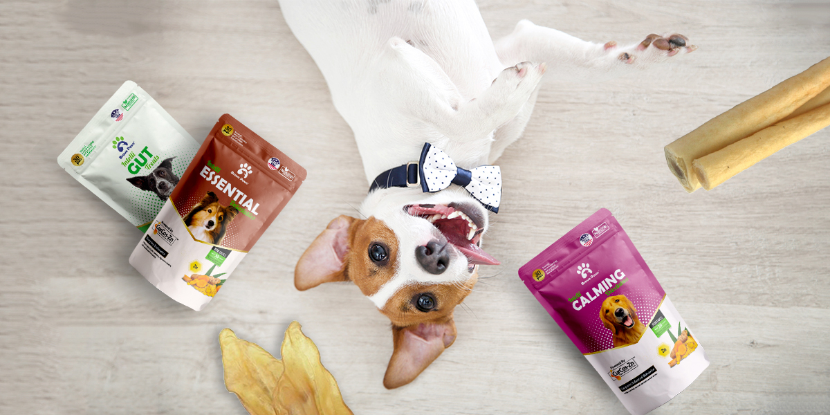Pet subscription box with a supplement in the USA