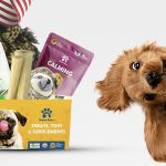 Ultimate subscription box for dogs in the USA