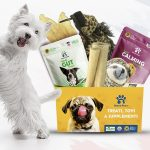Veterinarian approved monthly pet subscription box