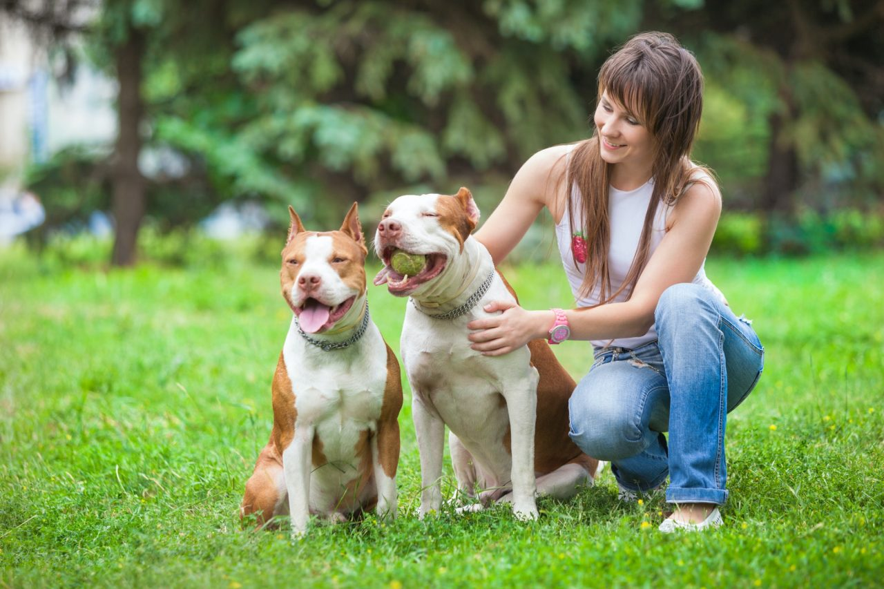 Charming lady posing with dogs outdoors
